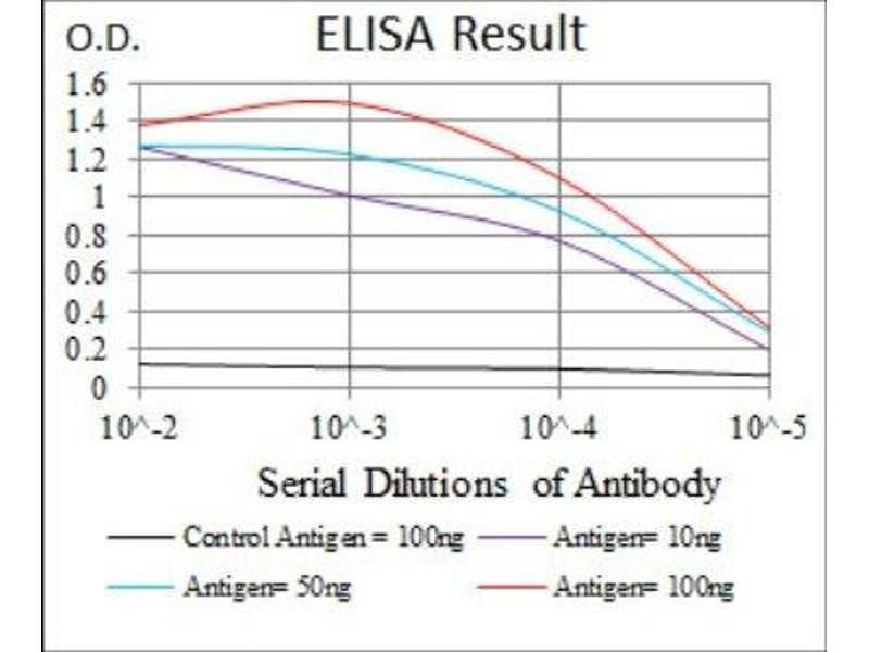 ELISA image for anti-Sonic Hedgehog (SHH) antibody (ABIN4355158)