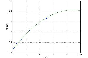 Image no. 1 for Purinergic Receptor P2X, Ligand Gated Ion Channel 1 (P2RX1) ELISA Kit (ABIN5523805)