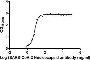 Image no. 2 for anti-SARS-CoV-2 Nucleocapsid (SARS-CoV-2 N) (AA 1-419) antibody (ABIN6953156)