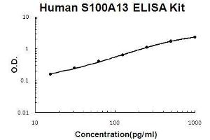 Image no. 1 for S100 Calcium Binding Protein A13 (S100A13) ELISA Kit (ABIN5510725)