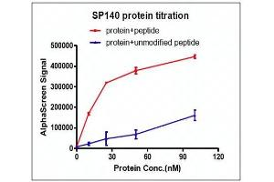 Image no. 1 for SP140 Nuclear Body Protein (SP140) (AA 688-862) protein (His tag,DYKDDDDK Tag) (ABIN2669696)