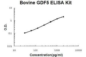 Image no. 1 for Growth Differentiation Factor 5 (GDF5) ELISA Kit (ABIN5510670)