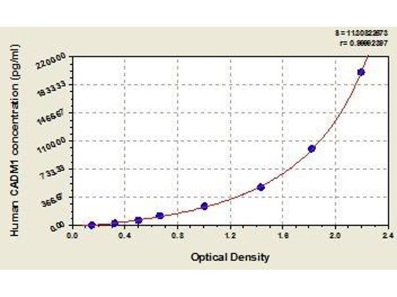 Cell Adhesion Molecule 1 (CADM1) ELISA Kit