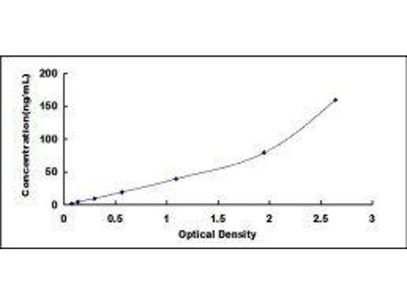 Insulin-Like Growth Factor Binding Protein 7 (IGFBP7) ELISA Kit
