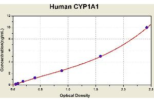 Image no. 1 for Cytochrome P450, Family 1, Subfamily A, Polypeptide 1 (CYP1A1) ELISA Kit (ABIN1114525)