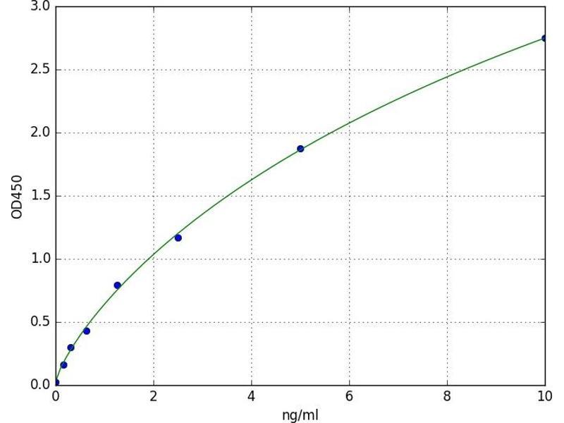 Adenosine A1 Receptor (ADORA1) ELISA Kit