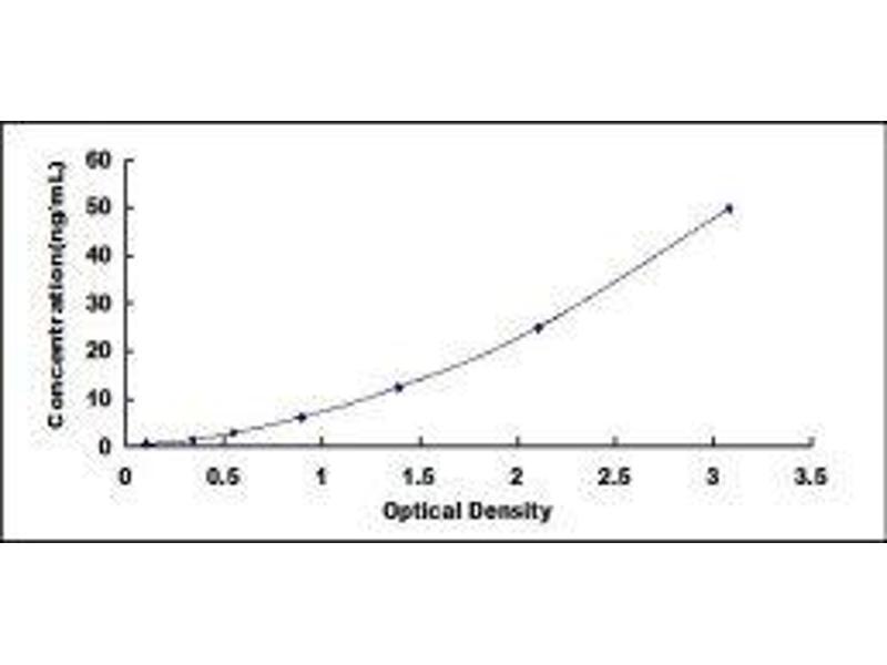 Low Density Lipoprotein Receptor-Related Protein 5 (LRP5) ELISA Kit