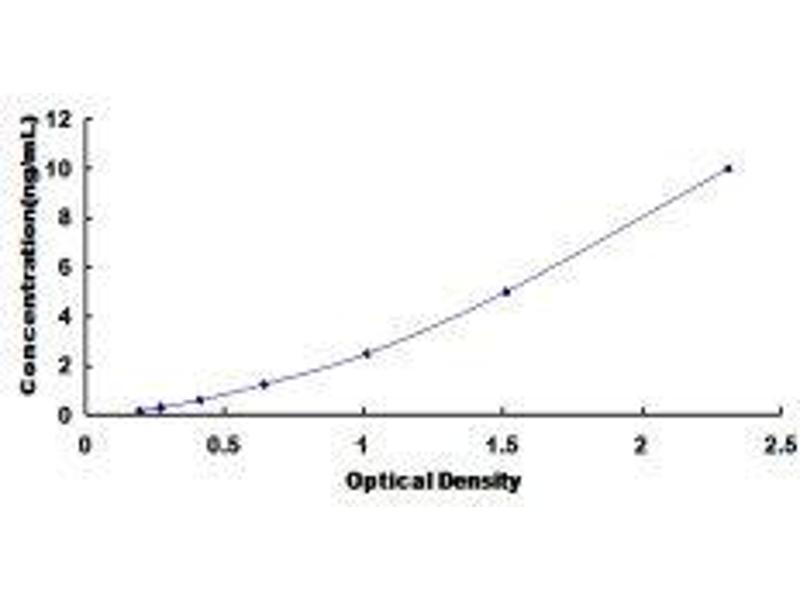 Ras Protein-Specific Guanine Nucleotide-Releasing Factor 1 (RASGRF1) ELISA Kit