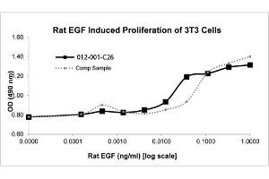 Image no. 2 for Epidermal Growth Factor (EGF) protein (ABIN6699802)