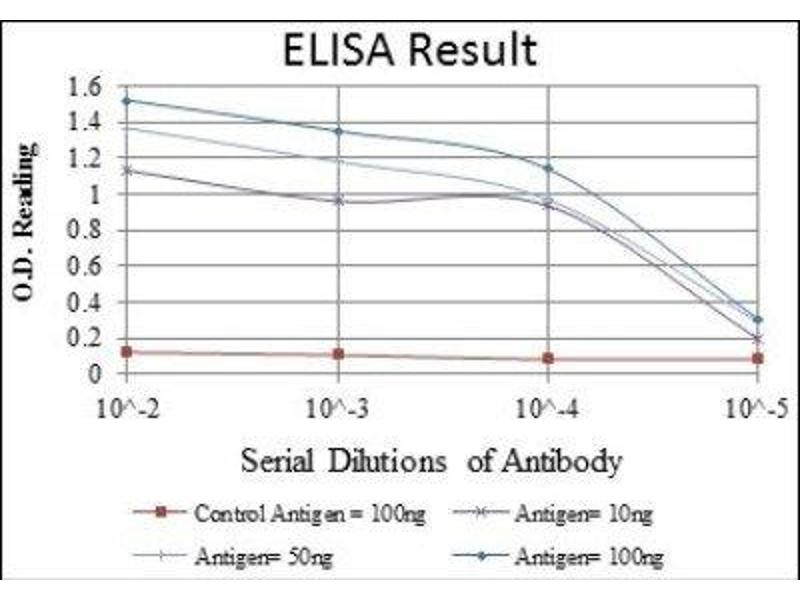 ELISA image for anti-Heat Shock 60kDa Protein 1 (Chaperonin) (HSPD1) antibody (ABIN4320144)