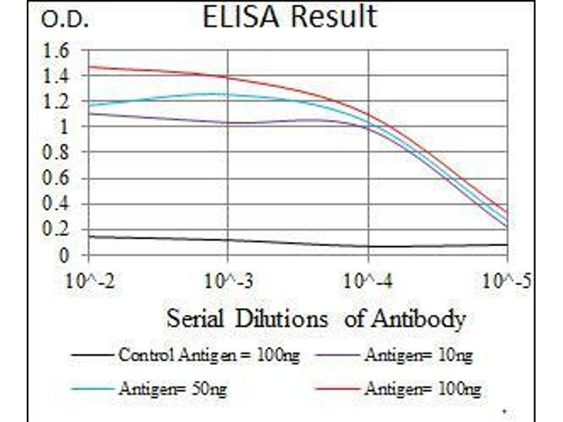 ELISA image for anti-Signal Transducer and Activator of Transcription 5A (STAT5A) (AA 583-794) antibody (ABIN1098129)