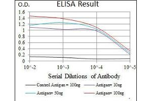 ELISA image for anti-STAT5A antibody (Signal Transducer and Activator of Transcription 5A) (AA 583-794) (ABIN1098129)