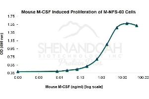 image for Colony Stimulating Factor 1 (Macrophage) (CSF1) (Active) protein (ABIN780957)