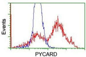 Flow Cytometry (FACS) image for anti-PYD and CARD Domain Containing (PYCARD) antibody (ABIN4281806)