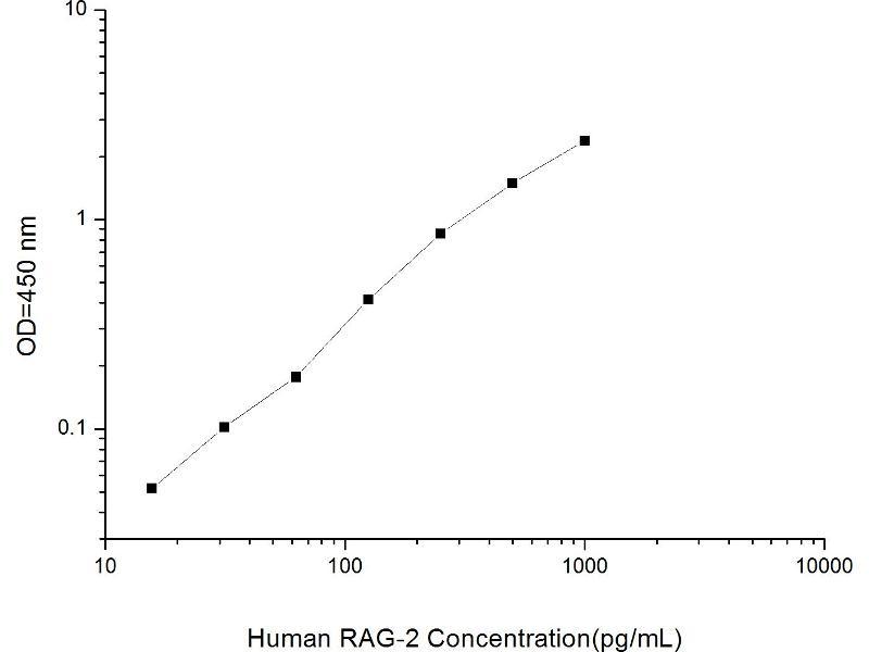 Recombination Activating Gene 2 (RAG2) ELISA Kit