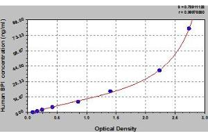 Image no. 1 for Bactericidal/Permeability Increasing Protein (BPI) ELISA Kit (ABIN6974219)