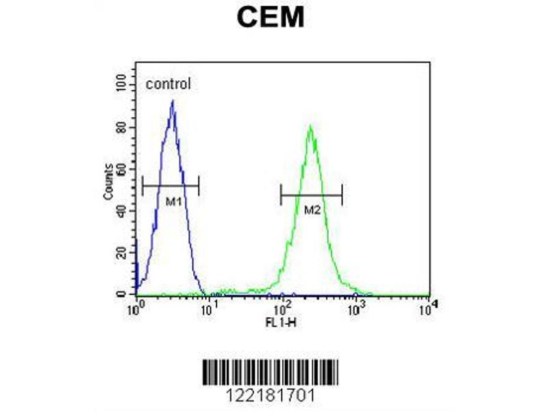 Flow Cytometry (FACS) image for anti-Complement Factor P (CFP) (AA 197-223), (Center) antibody (ABIN653898)