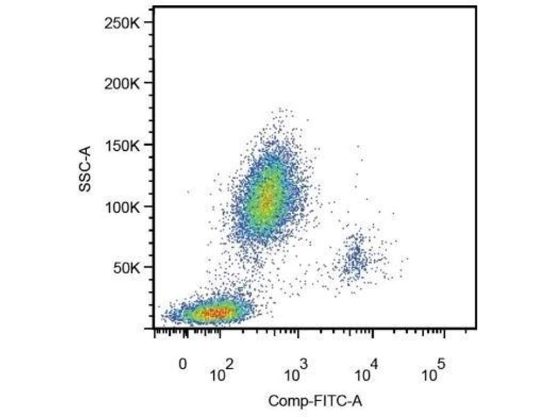 Flow Cytometry (FACS) image for anti-CD14 Molecule (CD14) (AA 57-64) antibody (ABIN4289674)