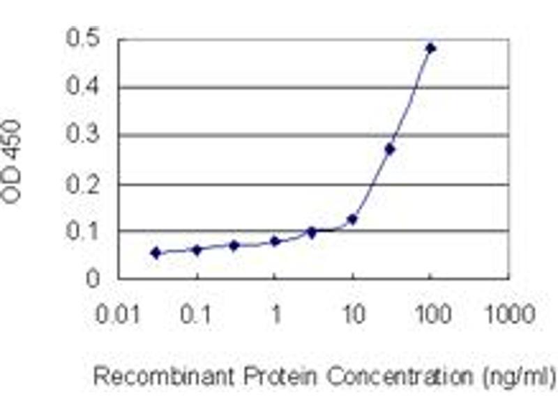 ELISA image for anti-Lamin B1 (LMNB1) (AA 107-186), (partial) antibody (ABIN517542)