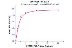 Image no. 3 for Vascular Endothelial Growth Factor (VEGF) (AA 27-191) (Active) protein (ABIN2181903)