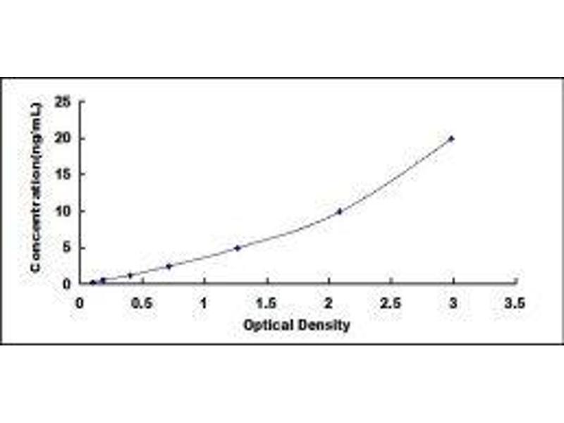 Cubilin (Intrinsic Factor-Cobalamin Receptor) (CUBN) ELISA Kit