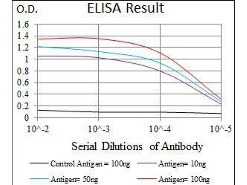ELISA image for anti-Secretoglobin, Family 1A, Member 1 (Uteroglobin) (SCGB1A1) (AA 26-91) antibody (ABIN1098131)
