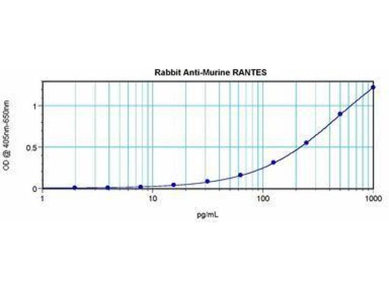 image for anti-Chemokine (C-C Motif) Ligand 5 (CCL5) antibody (ABIN465616)