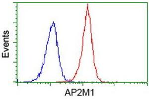 Image no. 4 for anti-Adaptor-Related Protein Complex 2, mu 1 Subunit (AP2M1) (AA 97-383) antibody (ABIN1491721)
