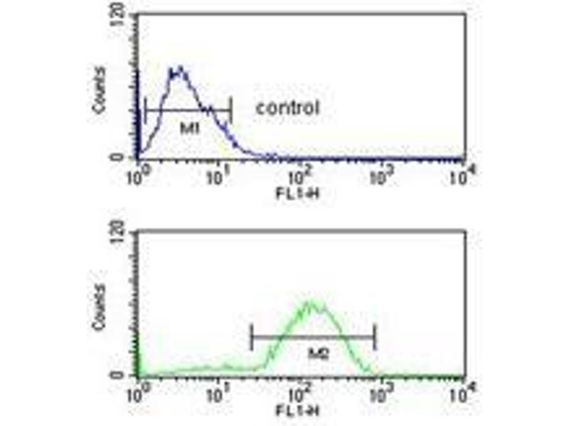 Flow Cytometry (FACS) image for anti-Hydroxysteroid (11-Beta) Dehydrogenase 2 (HSD11B2) (AA 284-314), (Middle Region) antibody (ABIN950176)