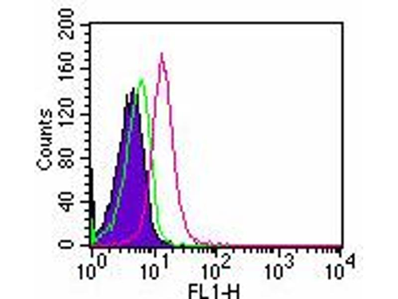 image for anti-Toll-Like Receptor 5 (TLR5) antibody (FITC) (ABIN956813)