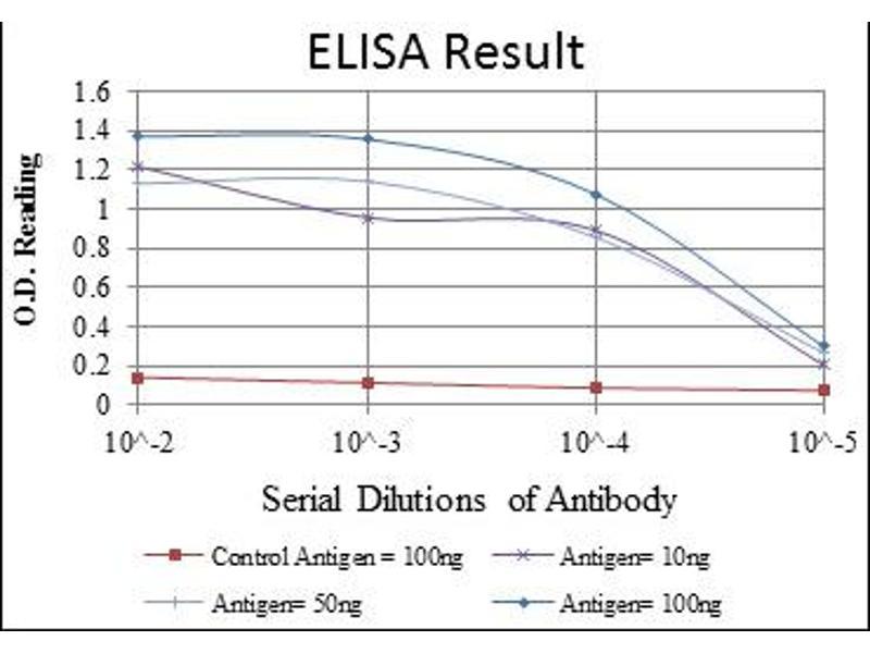 ELISA image for anti-Lamin A/C antibody (LMNA) (ABIN1108015)