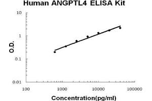 Image no. 1 for Angiopoietin-Like 4 (ANGPTL4) ELISA Kit (ABIN1672864)