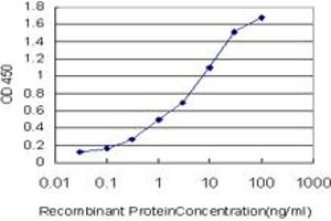 Image no. 2 for anti-Carbohydrate (Chondroitin 4) Sulfotransferase 11 (CHST11) (AA 230-337) antibody (ABIN565487)