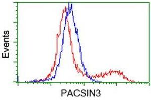 image for anti-Protein Kinase C and Casein Kinase Substrate in Neurons 3 (PACSIN3) antibody (ABIN1500011)