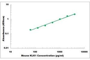 Image no. 1 for Kallikrein 1 (KLK1) ELISA Kit (ABIN5526835)