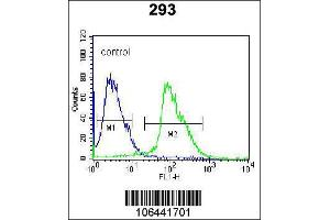 Flow Cytometry (FACS) image for anti-Kallikrein 7 antibody (KLK7) (C-Term) (ABIN2488651)