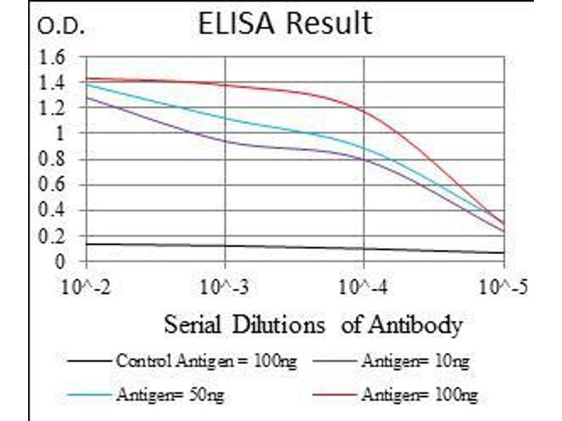 ELISA image for anti-Zinc Finger Protein 42 (ZFP42) (AA 249-310) antibody (ABIN1724852)