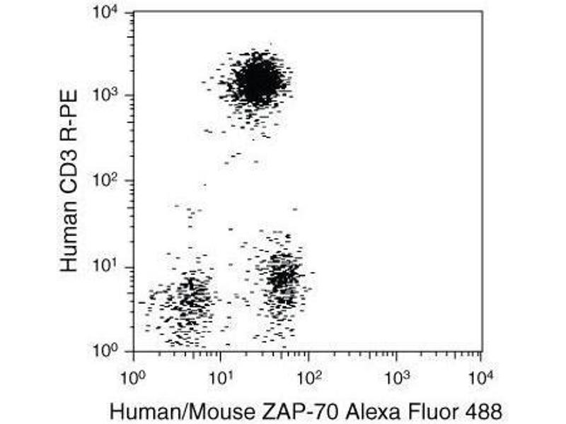 Flow Cytometry (FACS) image for FIX&PERM® Solution A (Fix) (ABIN1741578)