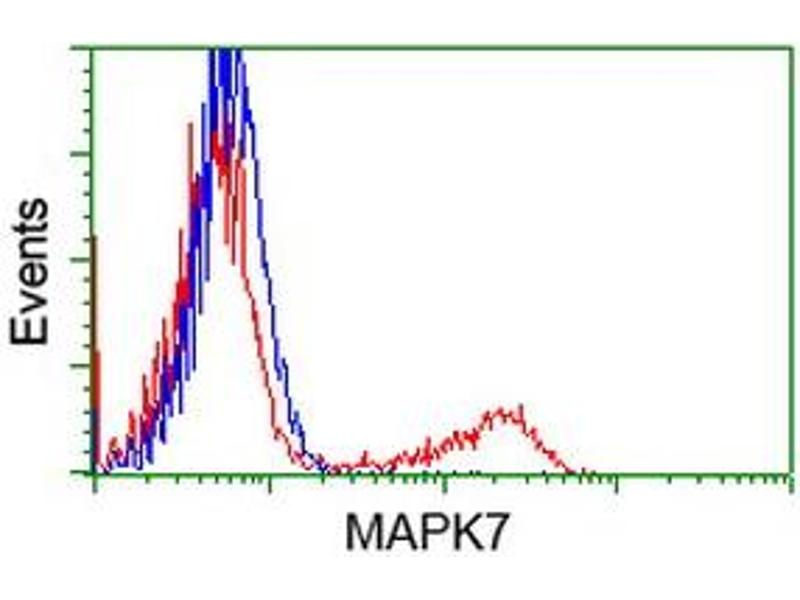 Flow Cytometry (FACS) image for anti-MAPK7 antibody (Mitogen-Activated Protein Kinase 7) (ABIN2454054)