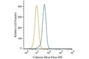 Flow Cytometry (FACS) image for anti-Calnexin antibody (CANX) (C-Term) (ABIN151474)