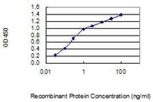 Image no. 4 for anti-Stress-Induced-phosphoprotein 1 (STIP1) (AA 445-543) antibody (ABIN950133)