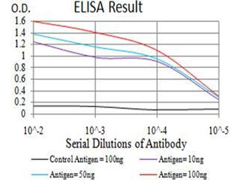 ELISA image for anti-Mitogen-Activated Protein Kinase 10 (MAPK10) (AA 180-329) antibody (ABIN5542487)