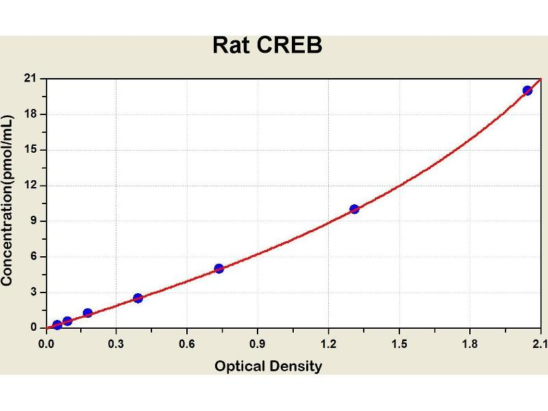 Cyclic AMP Response Element Binding Protein (CREB) ELISA Kit