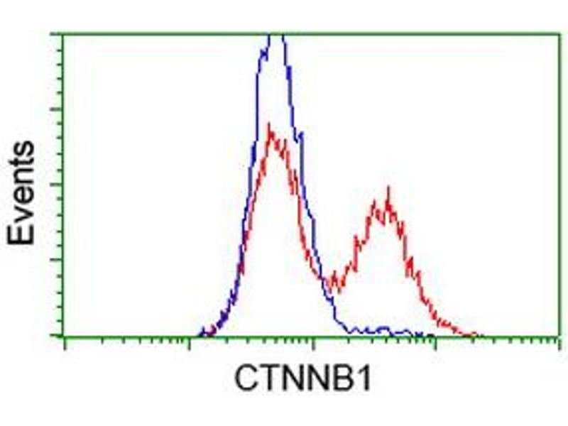 Flow Cytometry (FACS) image for anti-CTNNB1 antibody (Catenin (Cadherin-Associated Protein), beta 1, 88kDa) (ABIN2454166)