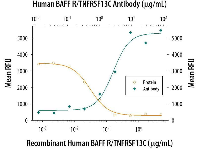 Neutralization (Neut) image for anti-Tumor Necrosis Factor Receptor Superfamily, Member 13C (TNFRSF13C) (AA 2-71) antibody (ABIN4899449)