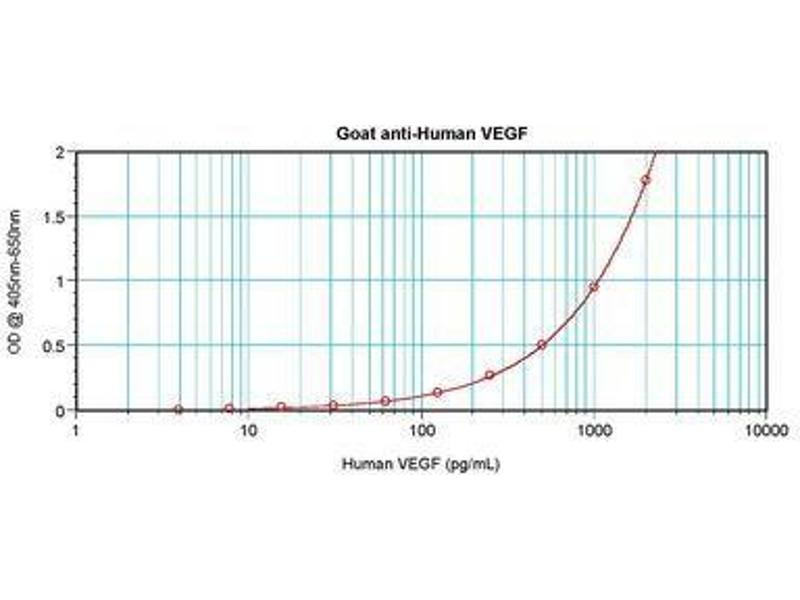 image for anti-Vascular Endothelial Growth Factor A (VEGFA) antibody (ABIN465469)
