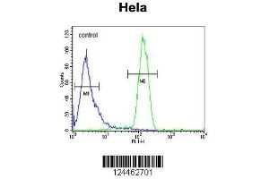 Flow Cytometry (FACS) image for anti-TM173 (AA 311-340), (C-Term) antibody (ABIN653703)
