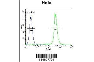Flow Cytometry (FACS) image for anti-Lin-28 Homolog A (C. Elegans) (LIN28A) (AA 108-138), (Center) antibody (ABIN655156)