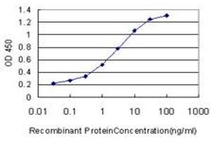 Image no. 2 for anti-Proliferating Cell Nuclear Antigen (PCNA) (AA 1-261) antibody (ABIN562136)