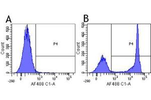 Flow Cytometry (FACS) image for anti-CD4 Molecule (CD4) antibody (ABIN5668250)